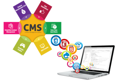 CMS Options For the Experienced Webmaster